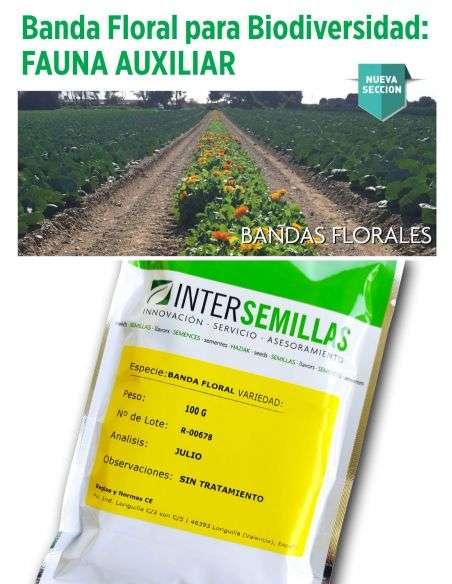 Banda Floral Fauna Auxiliar 100g porte variado para zonas perimetrales