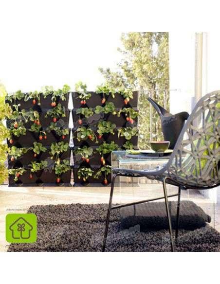 Jardín vertical Minigarden Negro MiniGarden - 8