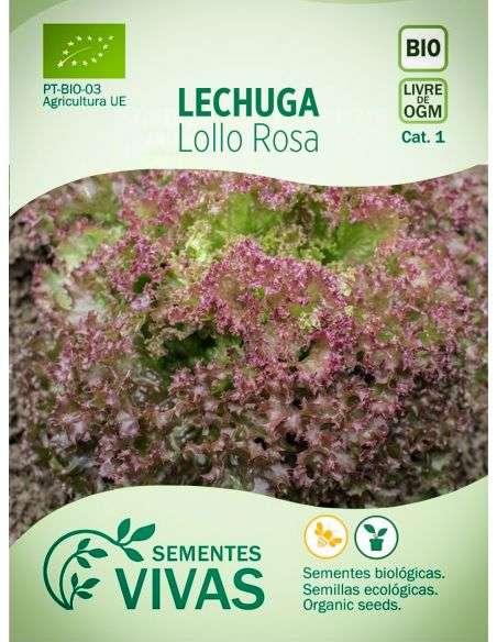 Semillas Ecológicas Lechuga Lollo Rosa - 1g.