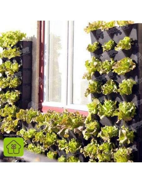 Jardín vertical Minigarden Negro MiniGarden - 11