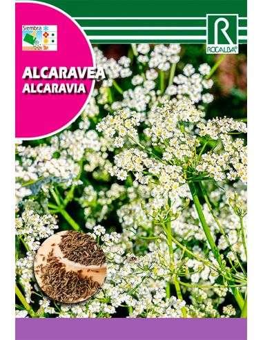 Semillas de Alcaravea 6g.
