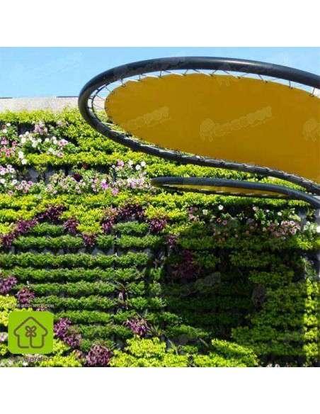 Jardín vertical Minigarden Negro MiniGarden - 30