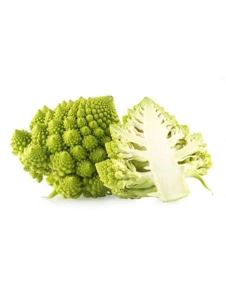 3u. Plantel Ecológico Coliflor Romanesco (Bróculi)