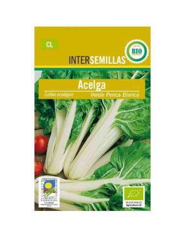 Semillas de Acelga Verde Penca Blanca 6gr. ECO INTERSEMILLAS - 1
