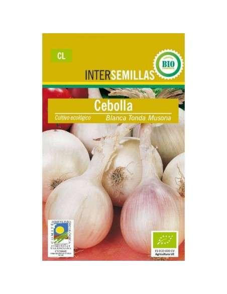 Semillas de Cebolla Musona Blanca Ecológicas INTERSEMILLAS - 1
