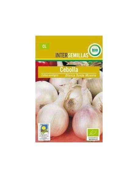Semillas de Cebolla Musona Blanca Ecológicas INTERSEMILLAS - 2