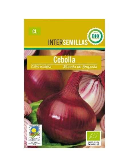 Semillas de Cebolla Morada de Amposta Ecológicas INTERSEMILLAS - 1