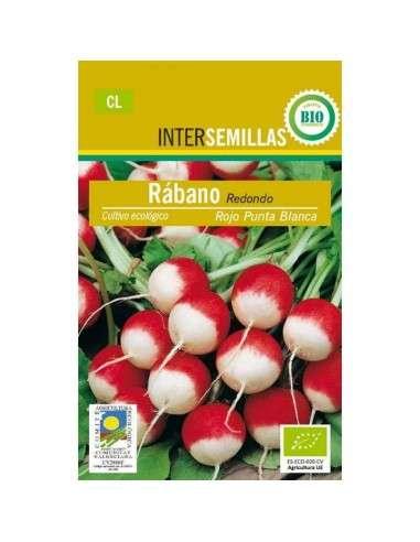 Semillas de Rabanito Rojo punta Blanca Ecológicas INTERSEMILLAS - 1
