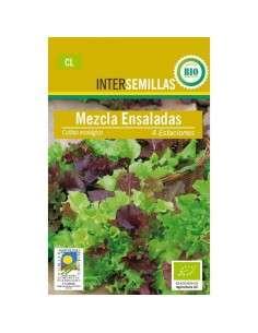 Lechuga Mezcla Ensaladas Ecológicas