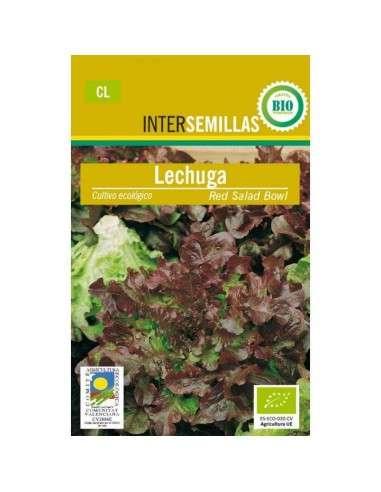 Semillas de Lechuga Hoja Roble Ecológicas INTERSEMILLAS - 1