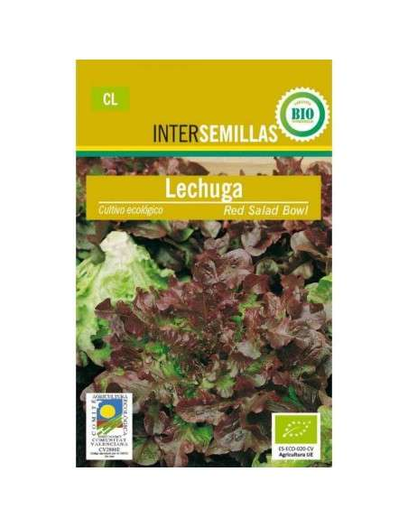 Semillas de Lechuga Hoja Roble Ecológicas INTERSEMILLAS - 1