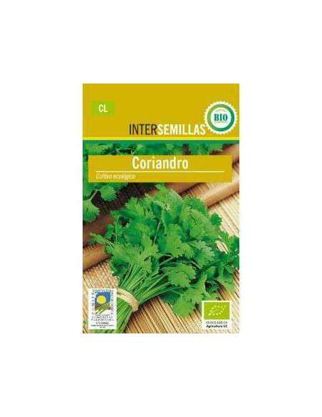 Semillas de Cilantro, Cilandro Coriandro Ecológicas INTERSEMILLAS - 2