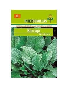 Semillas Borraja Flor Blanca 10gr.