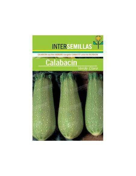 Semillas de Calabacín Verde CLaro 8gr. INTERSEMILLAS - 2
