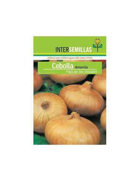 Semillas de Cebolla Amarilla Virtudes 7gr. INTERSEMILLAS - 2