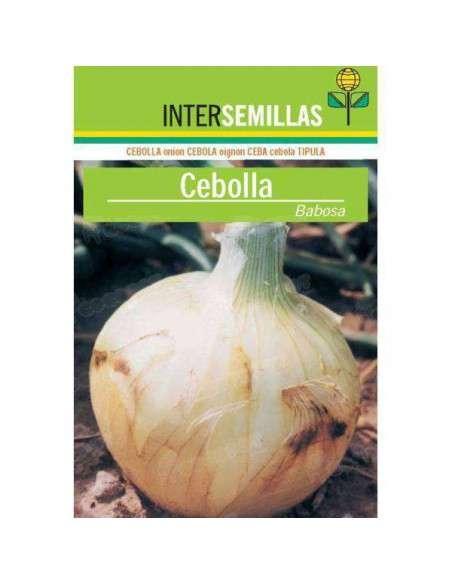 Semillas de Cebolla Babosa 7gr. INTERSEMILLAS - 1