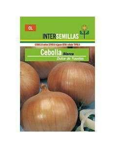 Semillas de Cebolla Blanca de Fuentes 7gr.