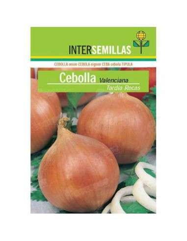 Semillas de Cebolla Valenciana Tardía Recas 7gr. INTERSEMILLAS - 1