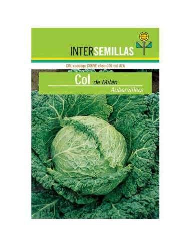 Semillas de Col Milán Aubervillers 8gr. INTERSEMILLAS - 1