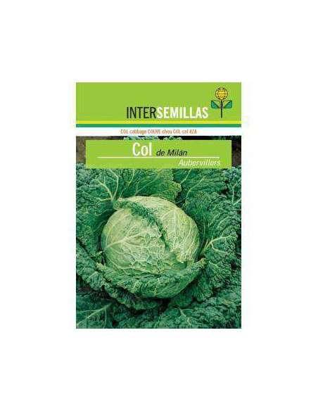 Semillas de Col Milán Aubervillers 8gr. INTERSEMILLAS - 2