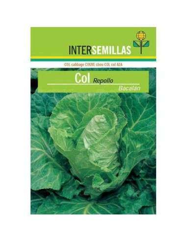 Semillas de Col Repollo Bacalán 8gr. INTERSEMILLAS - 1