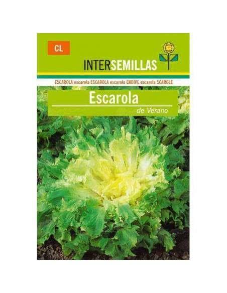 Semillas de Escarola de Verano 8gr. INTERSEMILLAS - 1