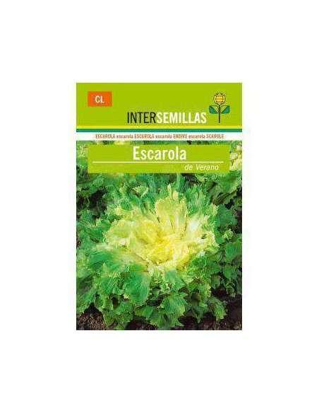 Semillas de Escarola de Verano 8gr. INTERSEMILLAS - 2