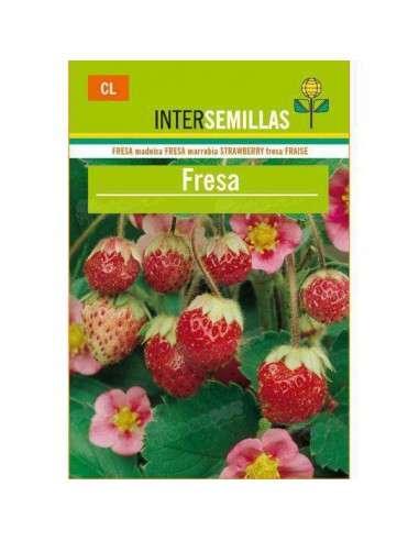 Semillas de Fresa Silvestre Fragaria Vesca INTERSEMILLAS - 1