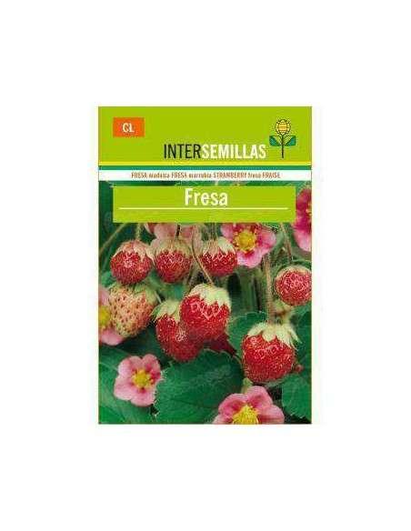 Semillas de Fresa Silvestre Fragaria Vesca INTERSEMILLAS - 2