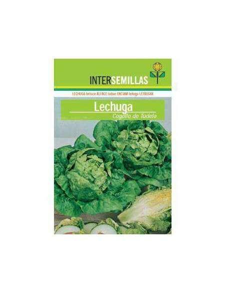 Semillas de Lechuga Cogollo de Tudela 8gr. INTERSEMILLAS - 2