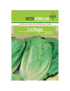 Semillas de Lechuga Inverna 8gr.