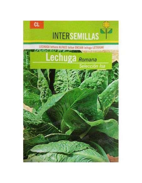 Semillas de Lechuga Romana Isa 8gr. INTERSEMILLAS - 1