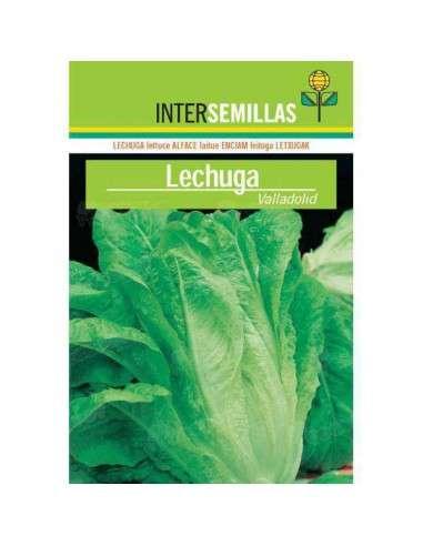 Semillas Lechuga Valladolid 8gr.