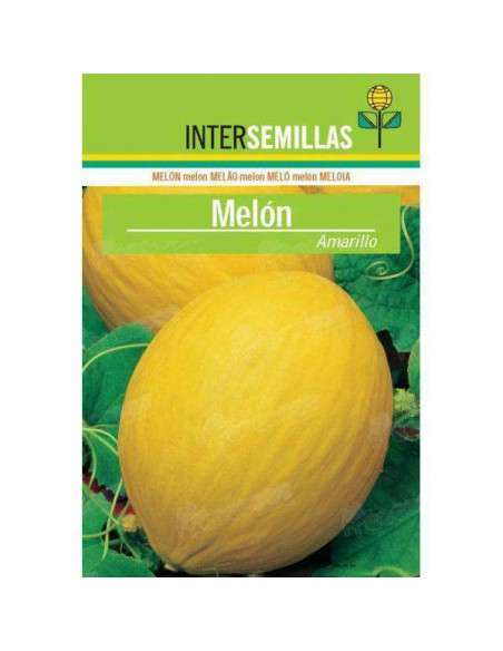 Semillas de Melón Amarillo 10gr. INTERSEMILLAS - 1