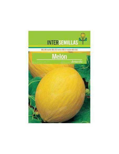 Semillas de Melón Amarillo 10gr. INTERSEMILLAS - 2