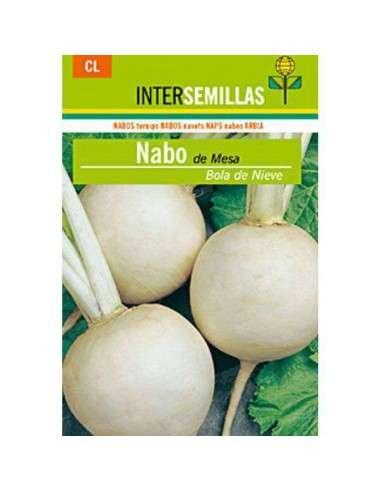 Semillas de Nabo de Mesa Nieve 8gr. INTERSEMILLAS - 1