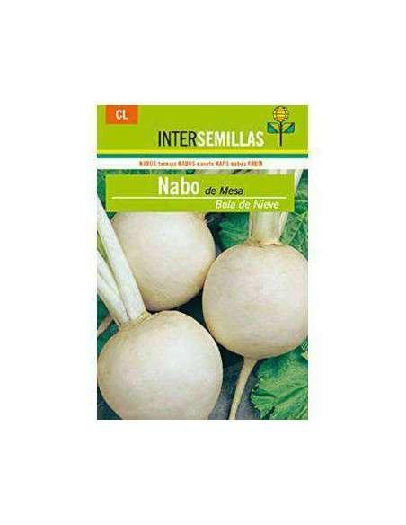 Semillas de Nabo de Mesa Nieve 8gr. INTERSEMILLAS - 2