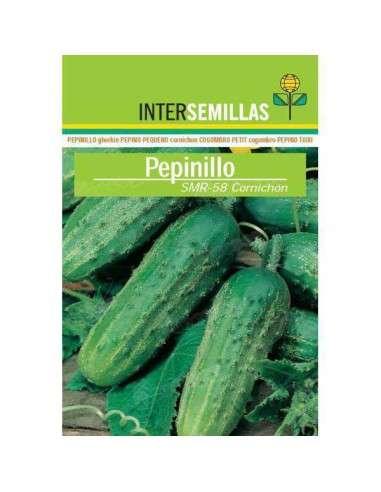 Semillas Pepinillo SMR-58 Cornichón 8gr.