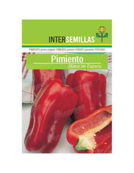 Semillas de Pimiento Dulce España 4gr. INTERSEMILLAS - 1