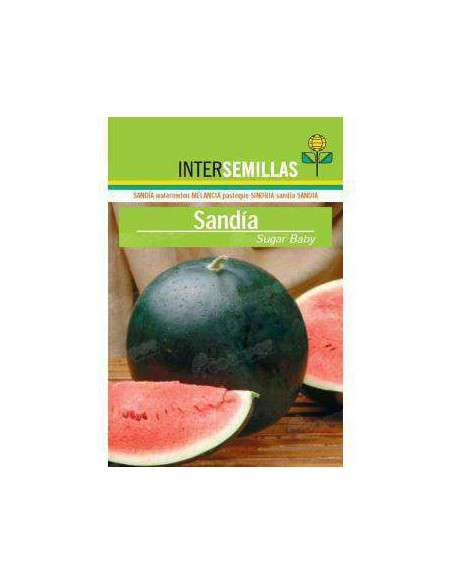 Semillas de Sandía Sugar Baby 10gr. INTERSEMILLAS - 2
