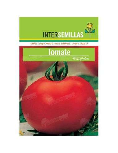 Semillas Tomate Marglobe 7gr. INTERSEMILLAS - 1
