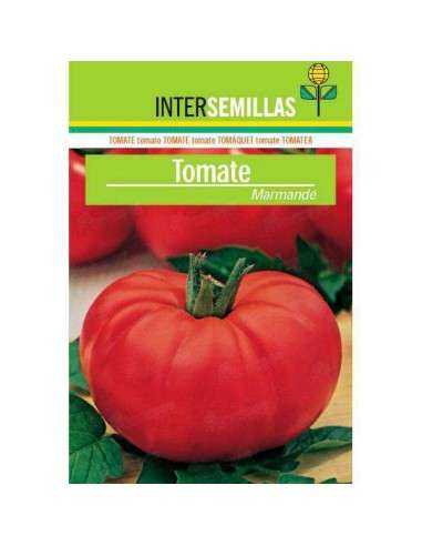 Semillas Tomate Marmande 4gr. INTERSEMILLAS - 1