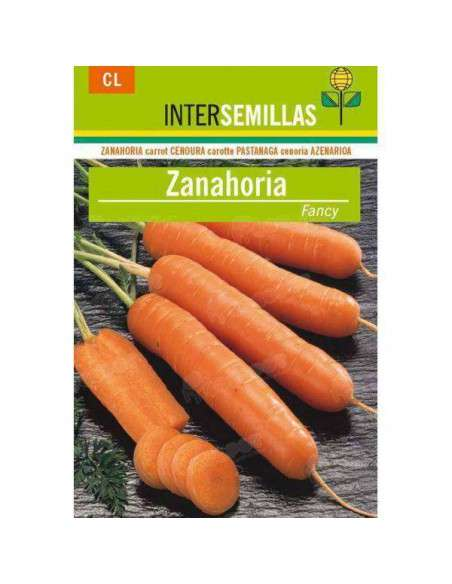 Semillas de Zanahoria Fancy 8gr. INTERSEMILLAS - 1