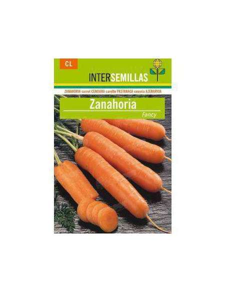 Semillas de Zanahoria Fancy 8gr. INTERSEMILLAS - 2