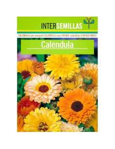 Semillas de Caléndula INTERSEMILLAS - 1
