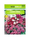 Clavel Chino
