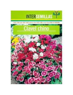 Semillas de Clavel Chino INTERSEMILLAS - 1