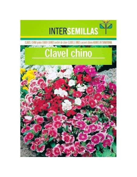 Semillas de Clavel Chino INTERSEMILLAS - 1
