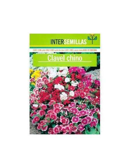 Semillas de Clavel Chino INTERSEMILLAS - 2