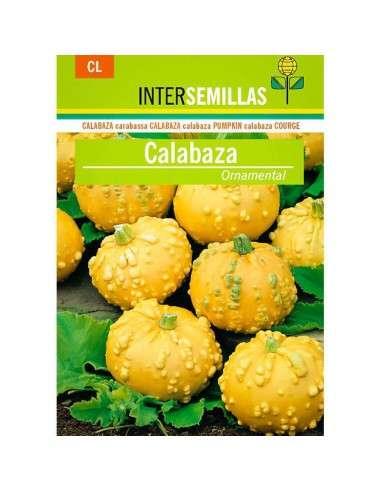Semillas de Calabaza Ornamental INTERSEMILLAS - 1